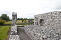 Annaghdown Abbey of St. John the Baptist de Cella Parva Walls and Grotto 2010 09 12.jpg