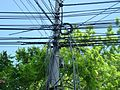 Arad elektriciteit 2017 3.jpg