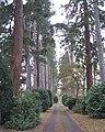 Arden Drive, Dorridge B93 - geograph.org.uk - 2196830.jpg