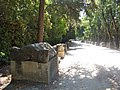 Arles Alyscamps 05.jpg