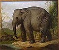 Asian elephant by Christian Wilhelm Kehrer, c. 1816, oil on canvas - Hessisches Landesmuseum Darmstadt - Darmstadt, Germany - DSC00087.jpg