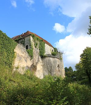 Asnières-en-Montagne - Image: Asnières en Montagne Chateau de Rochefort 41