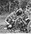 Awm 013644 capture Japanese infantry gun - Oivi-Gorari.jpg