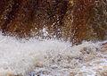 Aysgarth Falls MMB 66.jpg