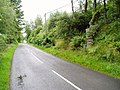 B729 road near Knockgray. - geograph.org.uk - 517856.jpg