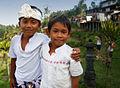 Bali – Rice terrace (2688148000).jpg