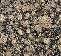 Baltic Brown Granite (rapakivi granite) (wiborgite) (Wiborg Batholith, 1.615-1.645 Ga, Paleoproterozoic; Husu Quarry, Kymi Province, Finland) 2 (25472675572).jpg
