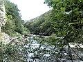 Banat,Nera Canyon - panoramio (14).jpg
