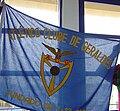 Bandeira geraldes.jpg