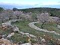 Barranco del Cao hike (26643453520).jpg