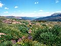 Bear River (Colorado) source.jpg