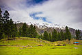 Beautiful view of Fairy Meadows, Pakistan.jpg