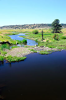 Beaver Creek (Crooked River) river in Oregon, United States of America