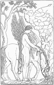 Βελλεροφόντης και Πήγασος (Μουσείο Σπάντα Ρώμης)