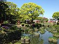 Benzaiten Shrine and iris pond in Kashii Shrine.JPG