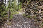Bergtocht van Tschiertschen (1350 meter) via Ruchtobel richting Ochsenalp 17.jpg