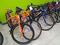Bicycle of salem.jpg