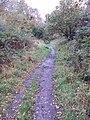 Bidston Hill - DSC04323.JPG