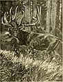 Big game hunting for boys, North America and Asia (1907) (19747087054).jpg