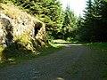 Blairmore Farm - Kilmun Track, Rock Outcrop - geograph.org.uk - 458350.jpg