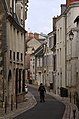 Blois (Loir-et-Cher) (30482799623).jpg