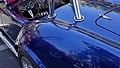 Blue Racer (8754962613).jpg