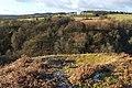 Bomb crater beside Auchenreoch Glen - geograph.org.uk - 1691534.jpg
