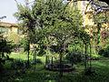 Borgo pinti 55, palazzina, giardino 09.JPG