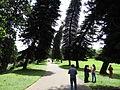 Botanical Garden of Peradeniya 80.JPG