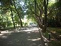 Botanical gardens 3 - panoramio.jpg