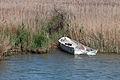 Bote no Delta do Ebro. Deltebre. Cataluña 15.jpg