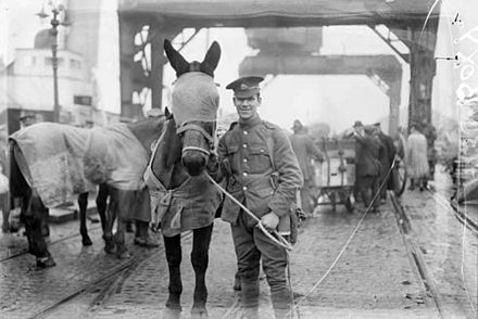 Soldiers of a British cavalry regiment leaving Dublin in 1922 British cavalry regiment leaving Ireland 1922.jpg