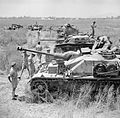 British troops inspect a line-up of captured German and Italian armoured fighting vehicles, Italy, 2 June 1944. NA15779.jpg