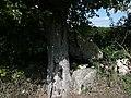 Broc - Dolmen de Chantepierre 2.jpg