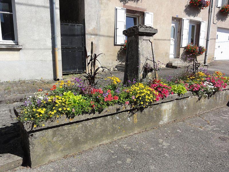 Brouville (M-et-M) fontaine