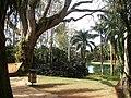 Brumadinho MG Brasil - Instituto Inhotim - panoramio (12).jpg