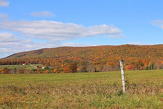 Columbia County, Pennsylvania - Image: Buck Mountain from Buck Mountain Road