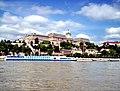 Buda Várpalota - panoramio.jpg