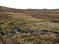 Burn in Monadh Meadhonach - geograph.org.uk - 1574477.jpg