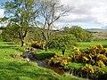 Burn near Loch Venachar - geograph.org.uk - 173057.jpg