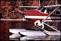 Bush Pilot-554655.jpg