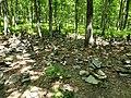 Bushkill Falls - stacks of stones 20200620 120920.jpg