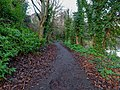 Bushy Park, Dublin -146489 (32605699398).jpg