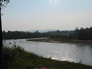 Buzău (river)