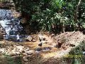 Cachoeira limpa.JPG