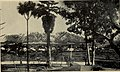 California south tehachapi.. (1900) (14756703336).jpg
