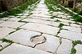 Calles Timgad 2.jpg