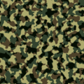 Camouflage pattern texture.png