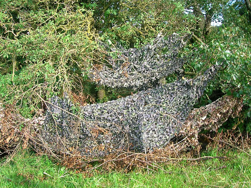 File:Camouflaged hide.jpg