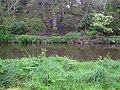 Camowen River, Omagh - geograph.org.uk - 1270964.jpg